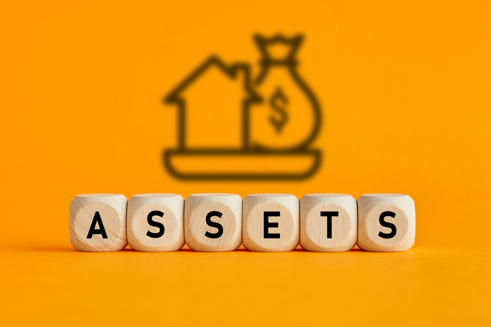 Why are assets important